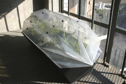 Foldable greenhouse will make you the envy of the balcony