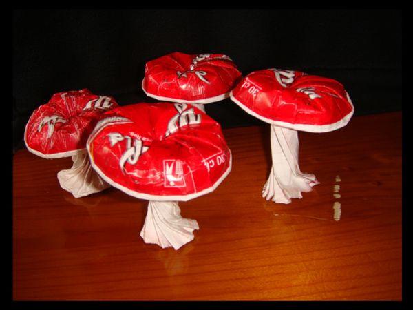 Paper cup mushrooms