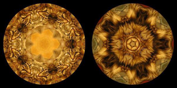 Kaleidoscope your photos