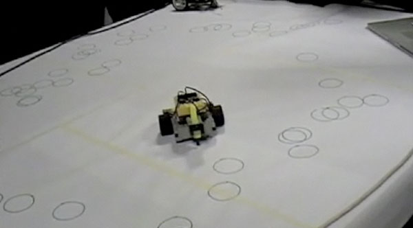 Robots engage in mating and marking activities