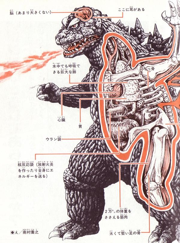 Anatomical drawings of Japanese movie monsters