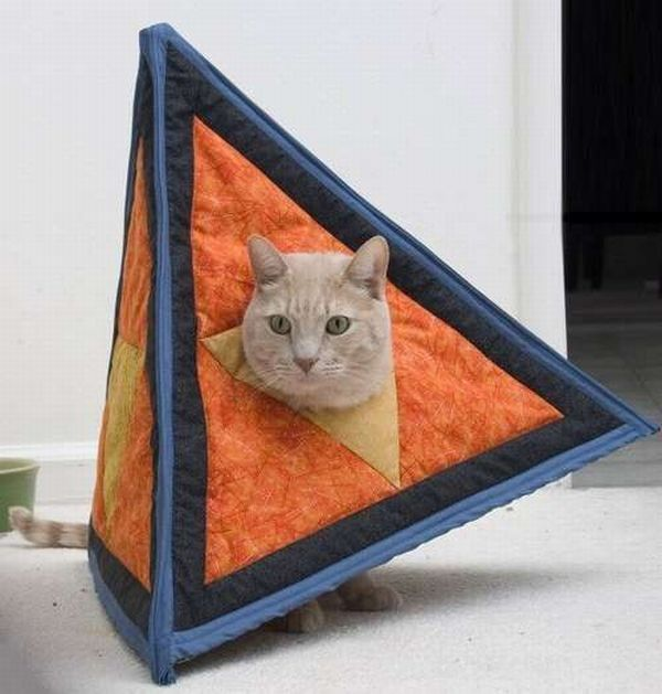 Catahedron: Your Cat as a Platonic Solid