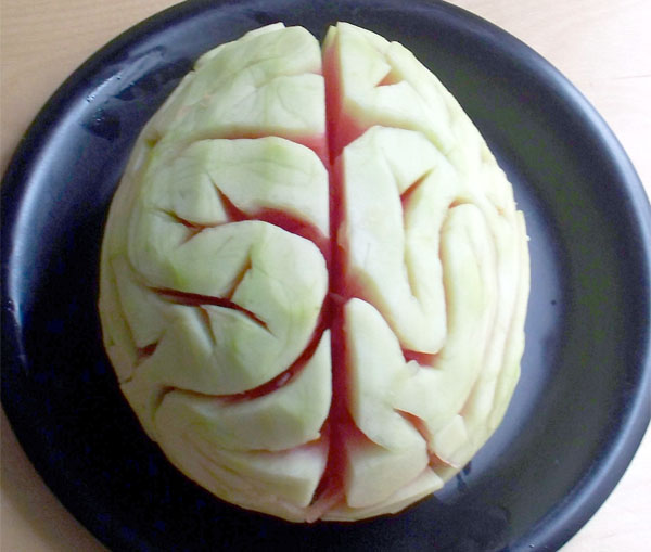 HOW TO – Melon brain