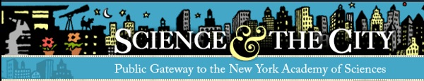 The Science of the Five Senses – NYC