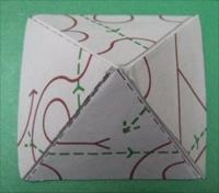 Make a Flexagon!