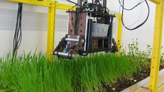 Robot gardening