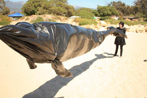 Trashbag whales