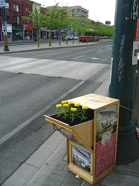 Newspaper box planters