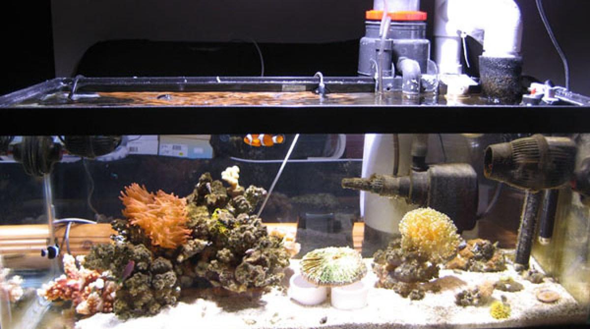 Arduino aquarium controller | Make: