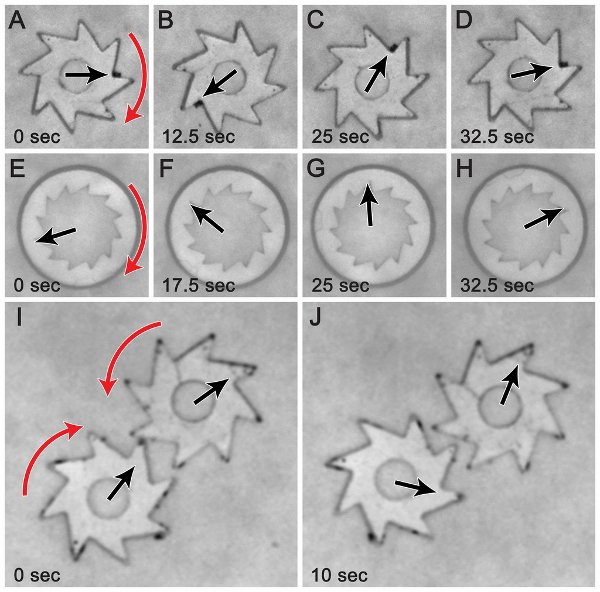 Harnessing bacteria to turn gears