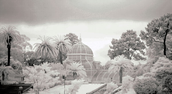 Flashback: Infrared photography
