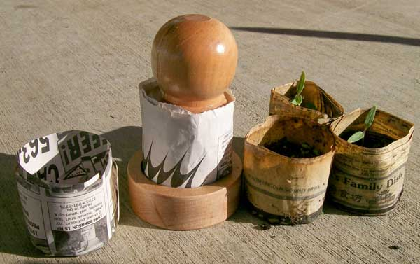 Clever die makes biodegradable seedling pots from newspaper