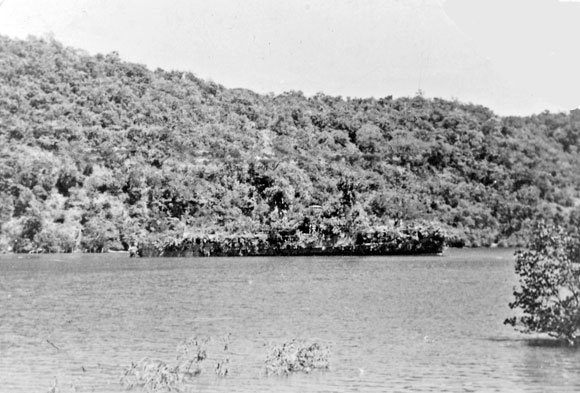 Warship camouflaged as tropical island