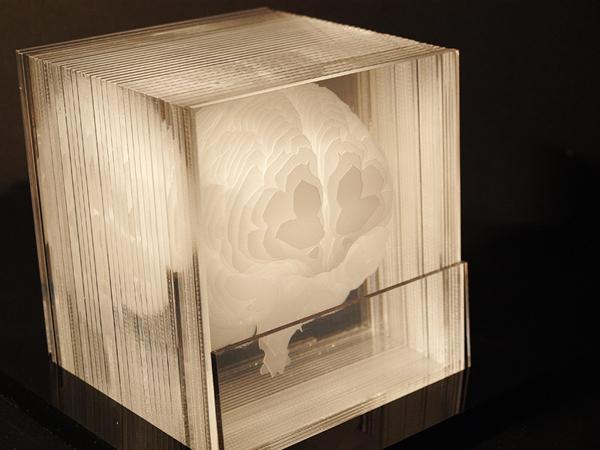 laser-etched brain model