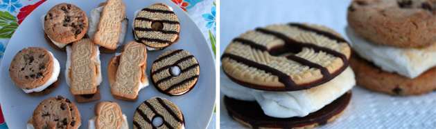 Summer Marshmallow S'mores