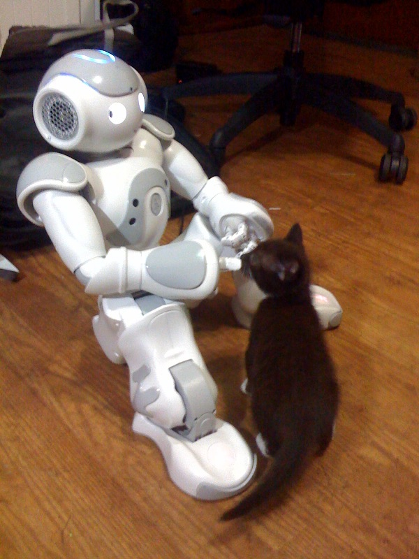 Have you filled out your Robot Census?