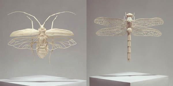 Matchstick entomology