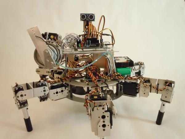 Prospero, a Robotic Farmer