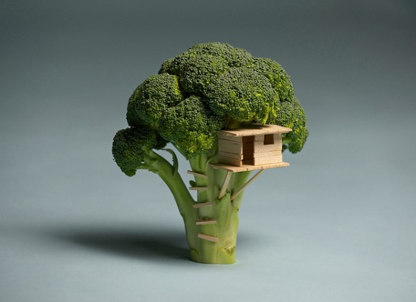 A Tiny Toothpick Treehouse in a Bitty Broccoli Tree
