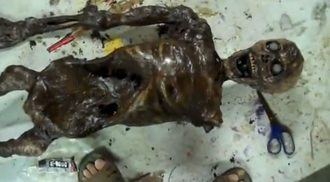 How-To: Corpse From Plastic Skeleton