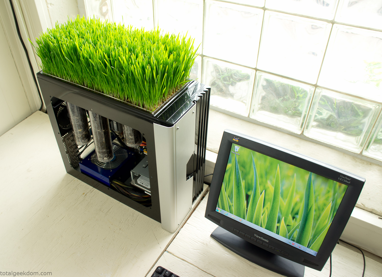 Bio Computer Germinates Plants