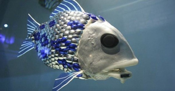 NEWS FROM THE FUTURE – Robot Fish Scan For Pollution
