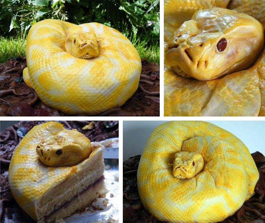 Snake Cake! Run for Your Lives!