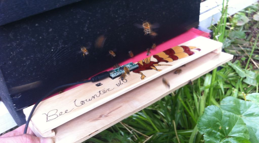 Maker Faire New York: Real Time Bee Counter with Cloud Datalogging