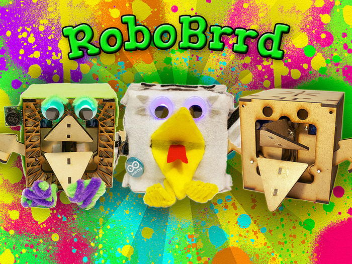 Learn About Robotics With RoboBrrd