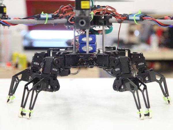 Hexapod Meets Hexacopter