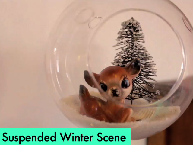 How-To: Floating Winter Terrariums