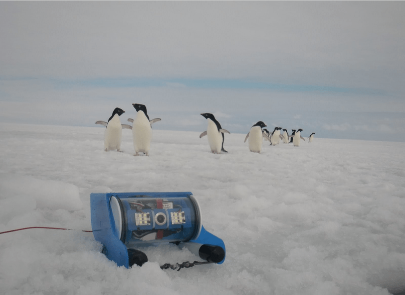 OpenROV Goes to Antarctica