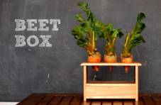 Since the Raspberry Pi has a built-in audio output, it can be used to make synths, samplers, and other musical instruments. Pictured here, The Beet Box, which brings vegetable-based instruments to a whole new level.