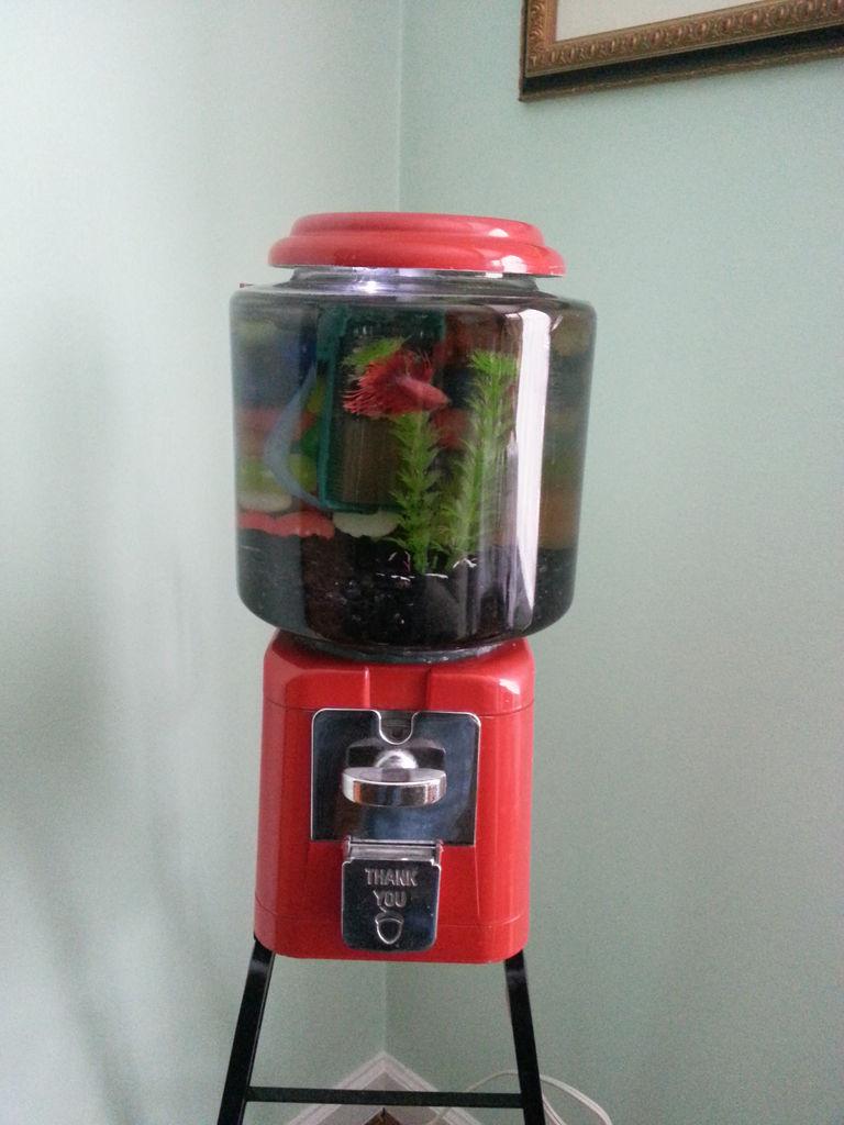 How-To: Gumball Machine Fish Tank