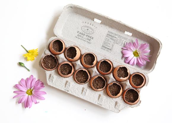Mini Egg Crate Garden