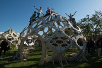 The makers of Zonotopia celebrate the completion of their three domes on Maker Faire's Midway.