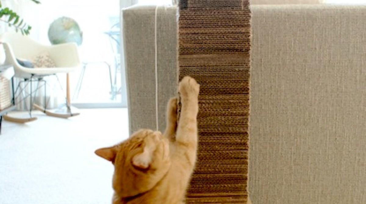 How-To: Skyscraper Cat Scratcher