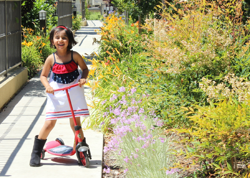 How-To: Stars and Stripes Knit Dress