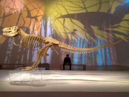 Sawaya's T Rex on display in Singapore.