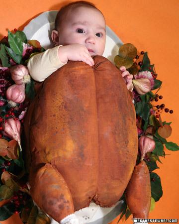 Roast Turkey Baby Costume