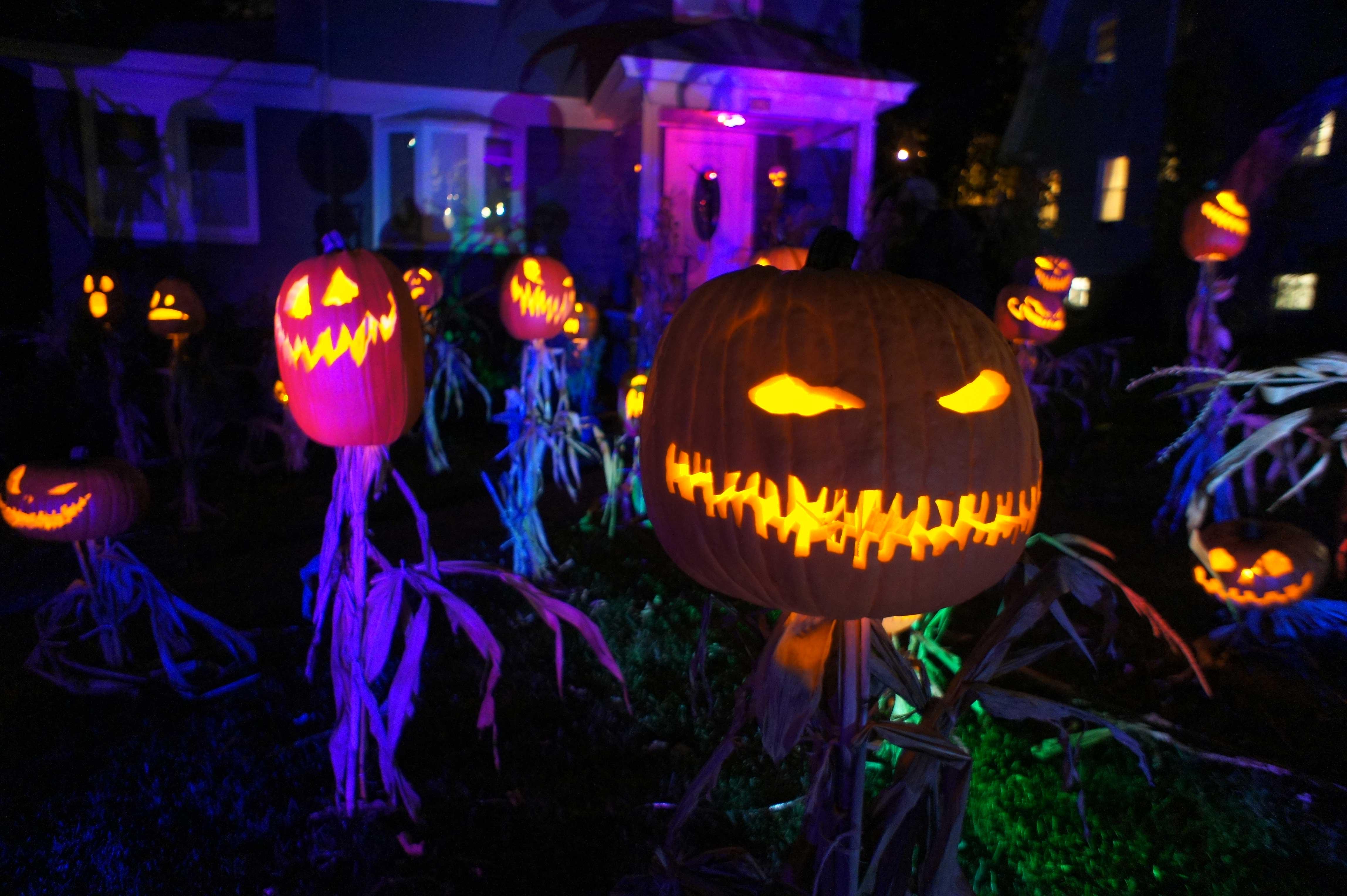 Halloween Jack O'Lantern King and his Scarecrow Minions