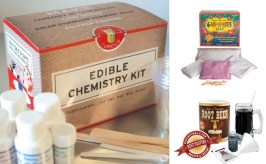 Get kids excited about science through food, and spend part of Winter Break playing and learning together. Kits can bridge your kids' interest in cooking and eating into a passion for chemistry. Maker Shed has three popular sets. Brew-It-Yourself Root Beer Kit, Make Your Own Gummies Kit, and Edible Chemistry Kit. Pair your kits with a fine book that places what they've learned in context. My friend and science evangelist Kishore loves the Theo Gray books, but my six-year-old son can't get his nose out of Bunpei Yorifuji's Wonderful Life with the Elements published by No Starch Press.