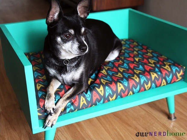 How-To: DIY Mid Century-Style Pet Bed