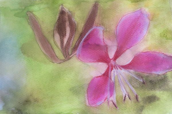 How-To: Use Watercolor Pencils