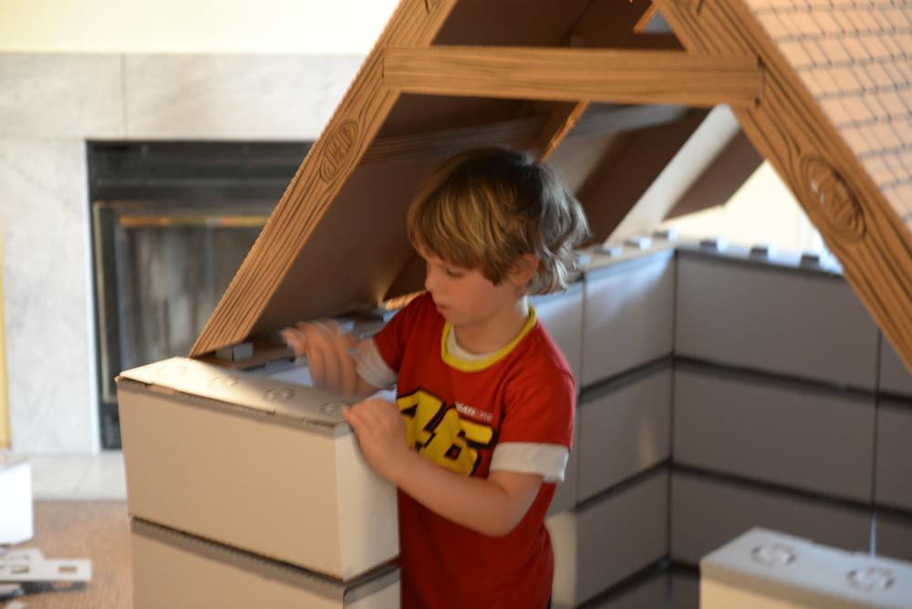 Real-Life Minecraft: Building Forts with Buildies Interlocking Blocks