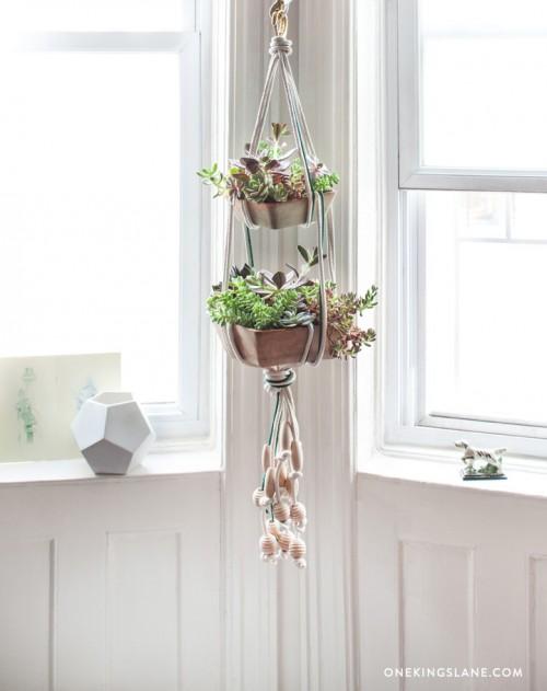 How-To: Hanging Succulent Garden
