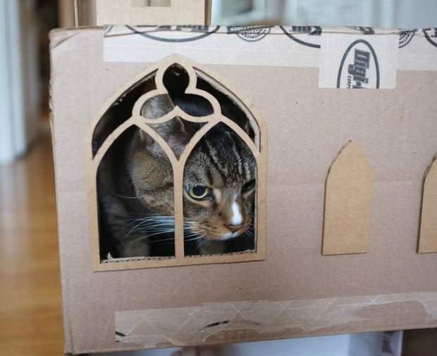 How-To: Blinged Out Cardboard Cat Fort