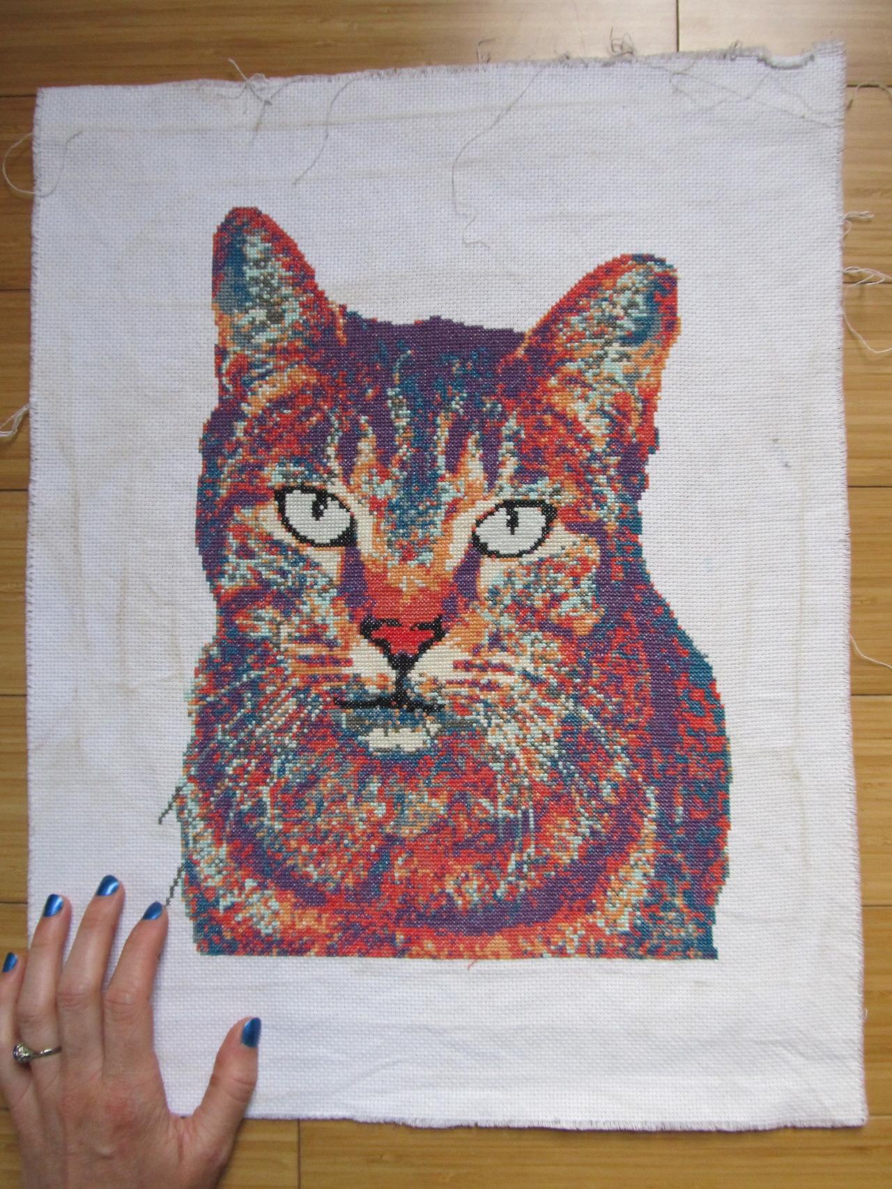 Rainbow Cat Embroidery