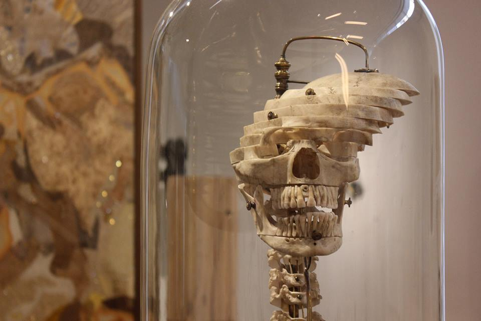 """The Art of Displaying """"Exploded"""" Skulls"""