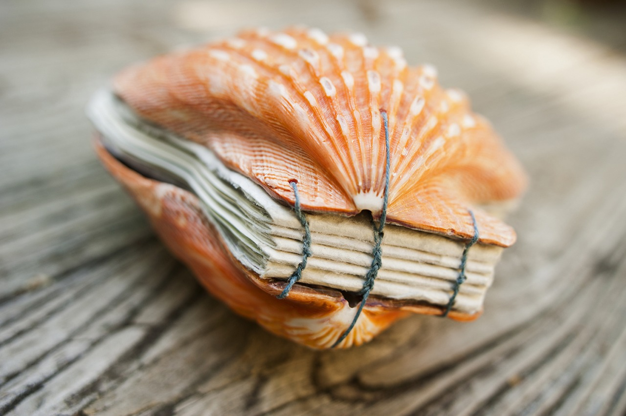 Artist's Book Made From Seashells